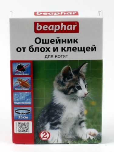 шампуни от паразитов для кошек
