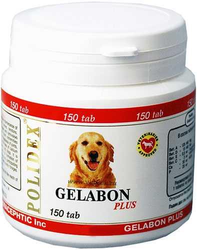гелабон плюс для собак инструкция - фото 11
